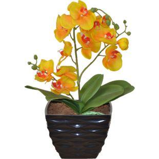 möbel direkt online Kunstblume Orchidee - Bild 1