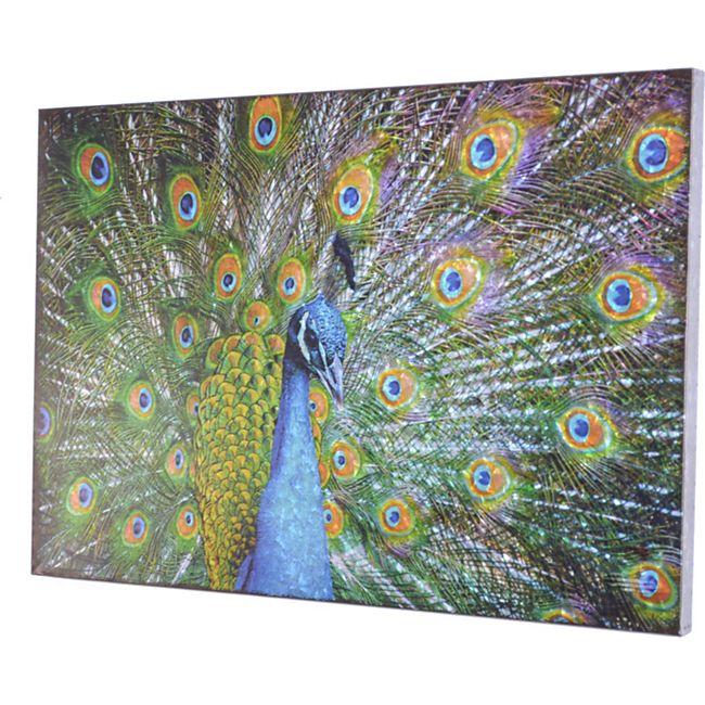 möbel direkt online Wanddekoration Pfau - Bild 1