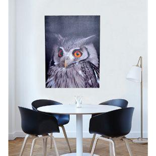 möbel direkt online LED-Wandbild 60x80 Lilli - Bild 1