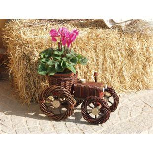möbel direkt online Blumenständer Weide - Bild 1