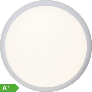 Vigor LED Wand- und Deckenleuchte 33cm weiß/kaltweiß - Bild 1