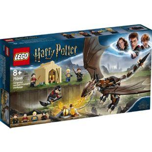 LEGO® Harry Potter 75946 Das Trimagische Turnier: der ungarische Hornschwanz - Bild 1