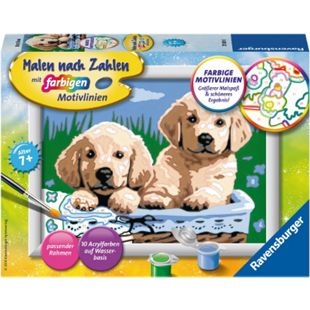Malen nach Zahlen Ravensburger 27839 : Süße Hundewelpen - Bild 1