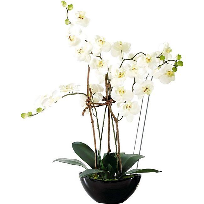 Kunstpflanze Modern Weiß/Schwarz - Bild 1