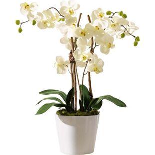 "Kunstpflanze Orchidee mit weißem Keramiktopf ""Elegance"" - Bild 1"