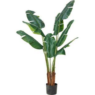 Kunstpflanze Traveller Palme Grün - Bild 1
