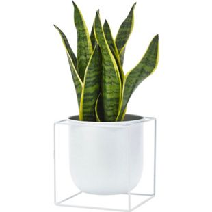 Deko-Übertopf Cube Weiß