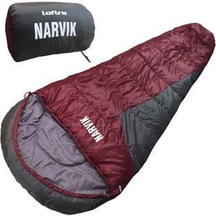 LOFTRA Schlafsack Narvik 4 Jahreszeiten Mumien-Schlafsack bis -16°C Extrem - Bild 1